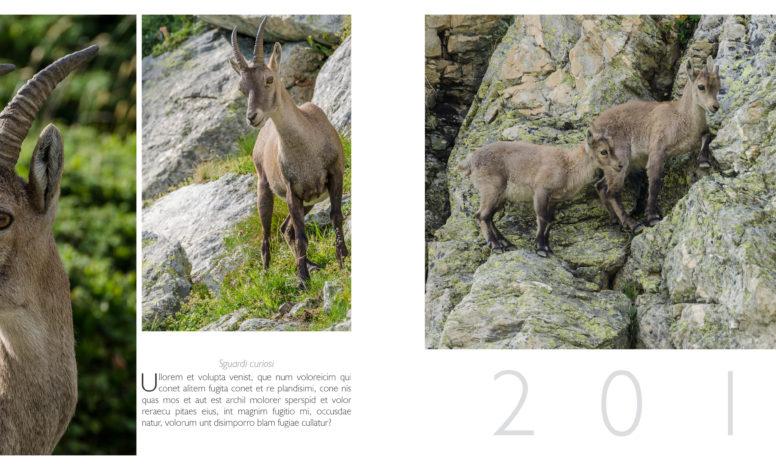 pagine 190-191